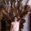 Krithi Achia